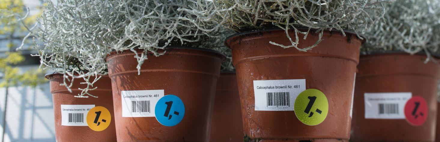 Avery Zweckform öntapadó címzés címkék